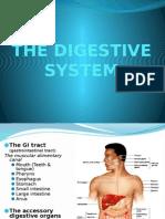 7-THE DIGESTIVE SYSTEM.pptx.pptx