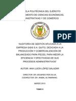 Auditoria Admtrativ a Una Empresa en Peru