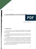 1995_07 Cultivos Herbaceos y Ayudas Por Superficie 20-10-14