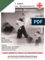 08/2015 Aikido Seminar Colonia (Uruguay)