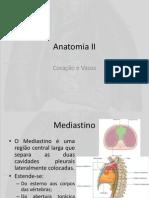 Cardiov Anatomia II
