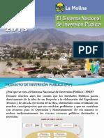 SNIP Peru.pdf