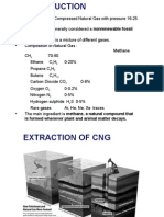 CNG_ppt