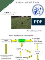 Manejo estrategico del pastoreo con ovinos.pptx