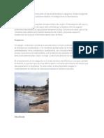 Los Gaviones Pasaron a Formar Parte de Las Obras Fluviales en Espigones2