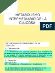 Metabolismo Carbohidratos 12-13s