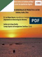 C.S.I.C BEJARANO.pdf