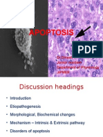 apoptosis  por  Dr.Dinesh T Junior resident Department of Physiology JIPMER sclero dinesh