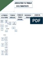 Mapa Conceptual LA AGRICULTURA Y EL TRABAJO EN EL TAWANTISUYO