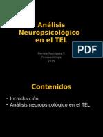 Análisis Neuropsicológico en El TEL