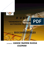 biocombustiblesword-111130153918-phpapp01