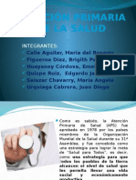 Atencionprimariadelasalud Expo Salud Publica II