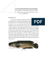 Genetic Variation of Striped Snakehead.docx