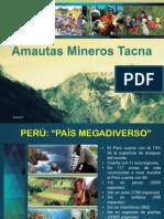 AMAUTAS OFICIAL2015.pdf