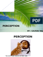 gaurav001.pptx