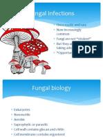 3b._Fungi_Zuger[1]