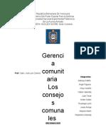 DIN - Consejos Comunales