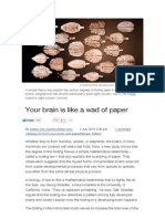 Your Brain is Like a Wad of Paper _ Science_AAAS _ News