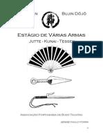 ESTÁGIO JUTTE, KUNAI, TESSEN (PROGRAMA).pdf