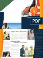 Brochure Vidya Consulting Group Ilovepdf Compressed Ilovepdf Compressed