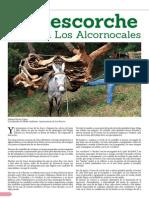 Decorche en Los Alcornocales
