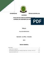 TESIS-Mod-plan-d-mkt (1).docx