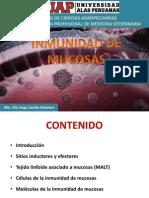 UAP - veterinaria