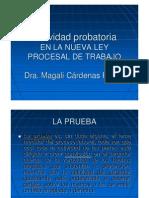 actividad_probatoria