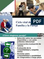 Ciclo Vital Familia Pareja(2011)