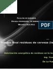 Trabajo Final - Valorizacion - De La Fuente