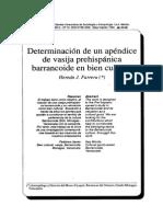 Determinación de un apéndice de vasija prehispanica