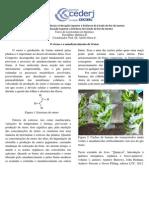 Curiosidades químicas 4 - O eteno e o amadurecimento de frutas.pdf