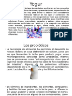 Yogur reynaldo expo leches fermentadas.pptx
