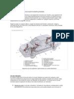 sUspensión Convencional Autonivelante Pilotada