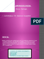 1 Otorrinolaringología boca y faringe.pptx