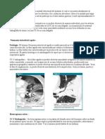 Terminos Radiología