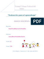 ENSAYO DESCRIPTIVO.pdf