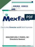 descricion-de-puestos.docx