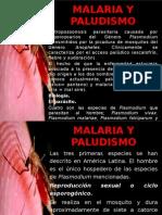 6.2. Malaria - Mc. José Barletta Villarán