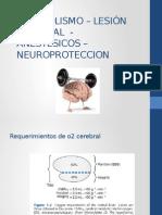 Metabolismo – Lesión Cerebral - Anestésicos – Neuroproteccion