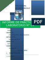 INFORME N° 04 FISICA  III - 2014