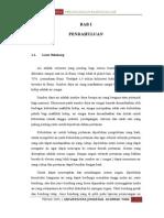 Perancangan Bangunan Air Bab i, II, III & IV Revisi 2