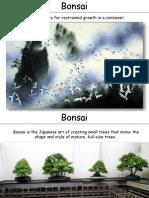 Bonsai practico