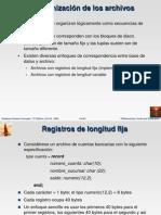Estructura de Archivos base de Datos