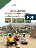 SABERESTRADICIONALESWEB.pdf