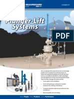 Plunger Lift Brochure