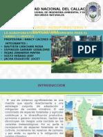 Expo Agroforesteria-cambio Climatico