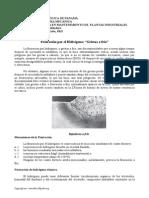 fisuracinporhidrgeno2-130424144053-phpapp02.doc