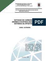Estoque de carbono e dinâmica ecofisiológica em sistemas silvipastoris