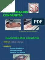 2014 UPSJB Malformaciones geneticas.pptx